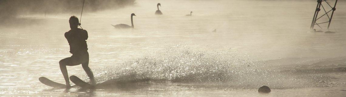 Wasserskifahrer mit Schwänen im Nebel